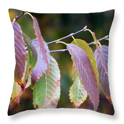 Macro Throw Pillow featuring the photograph Autumn Splendor by Lauren Radke