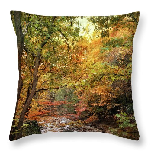 Nature Throw Pillow featuring the photograph Autumn Stream by Jessica Jenney