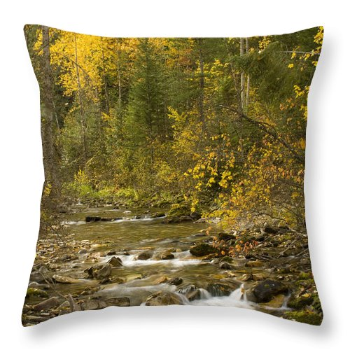 Idaho Throw Pillow featuring the photograph Autumn Stream by Idaho Scenic Images Linda Lantzy