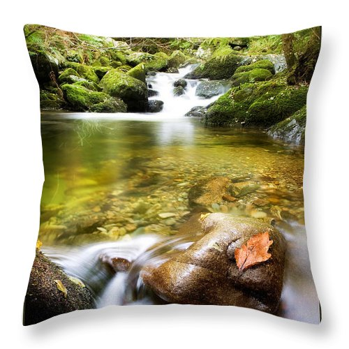 Stream Throw Pillow featuring the photograph Autumn Stream by Mal Bray