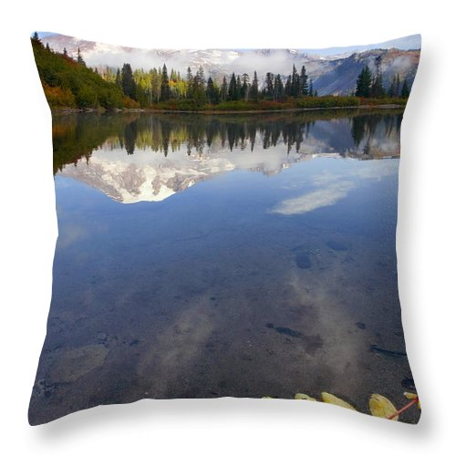 Rainier Throw Pillow featuring the photograph Autumn Suspended by Mike Dawson
