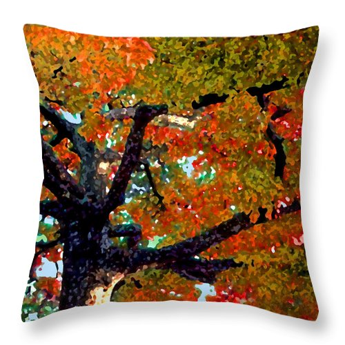 Fall Throw Pillow featuring the photograph Autumn Tree by Steve Karol