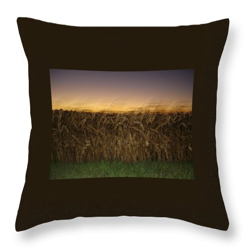 Autumn Throw Pillow featuring the photograph Autumn Twilight by Brittany Horton