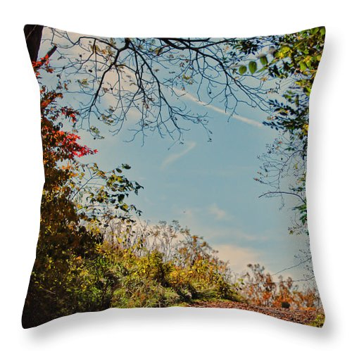 Autumn Trees Throw Pillow featuring the photograph Autumn Up Hill by Kerri Farley