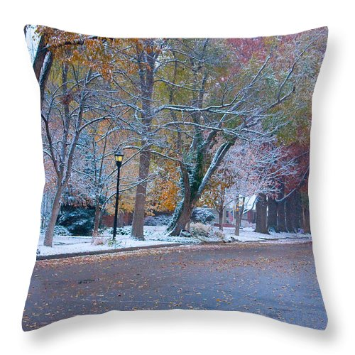 Street Throw Pillow featuring the photograph Autumn Winter Street Light Color by James BO Insogna
