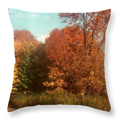 Throw Pillow featuring the photograph Autumn Woods by Jo Ann Farabee