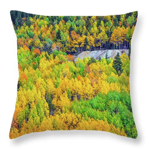 Fall Colors Throw Pillow featuring the photograph Autumnal Kaleidoscope by Bijan Pirnia