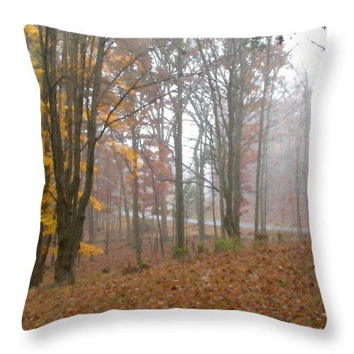 Autumn Throw Pillow featuring the painting Autumnal Mist by Paul Sachtleben