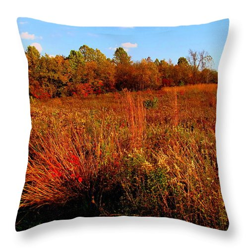 Autumn Throw Pillow featuring the painting Autumns Field by Scott Heaton