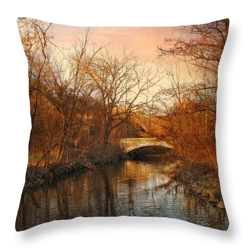 Autumn Throw Pillow featuring the photograph Autumn's Golden Glow by Jessica Jenney