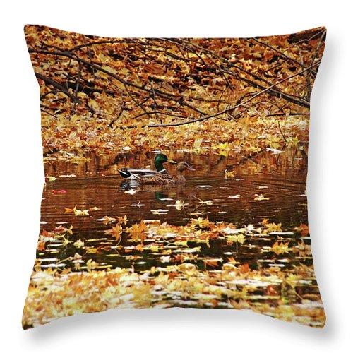 Autumn Throw Pillow featuring the photograph Autumns Mallards by Debbie Oppermann