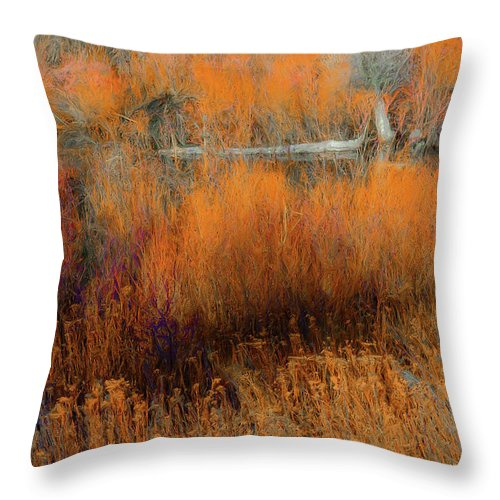 Fall Color Throw Pillow featuring the photograph Awaiting Passage by Dean Arneson