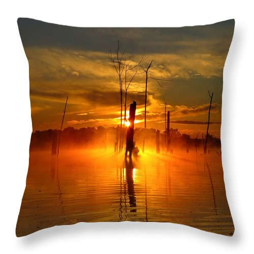 Water Throw Pillow featuring the photograph Awakened To Calm by William Caine