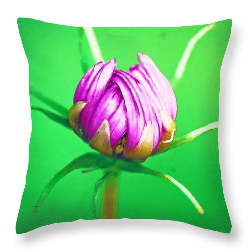 Flower Throw Pillow featuring the photograph Awakening by Donna Bentley