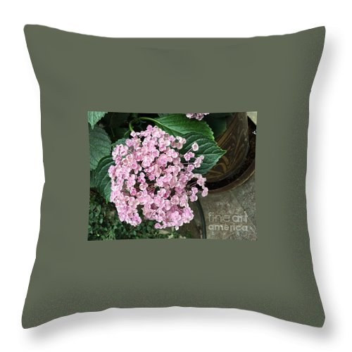 Throw Pillow featuring the photograph Ayesha by Jeannie Rhode