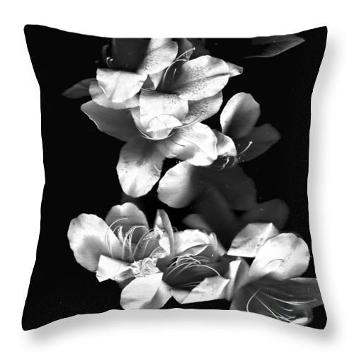 Azaela Throw Pillow featuring the photograph Azaela Blossom In Black And White by Wayne Potrafka