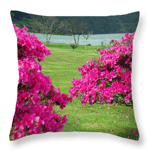Azaleas Throw Pillow featuring the photograph Azaleas At The Azores by Gaspar Avila