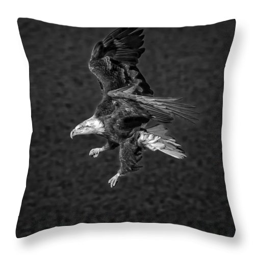 Black And White Throw Pillow featuring the photograph B/w Baldie by Philip Kuntz