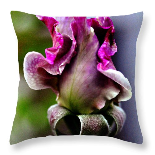Clay Throw Pillow featuring the photograph Baby Bud by Clayton Bruster