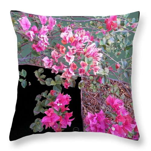 Square Throw Pillow featuring the digital art Back Door Bougainvillea by Eikoni Images