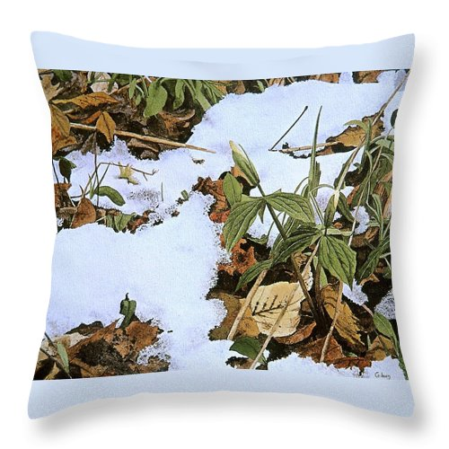 Still Life Throw Pillow featuring the painting Back Forty by Conrad Mieschke