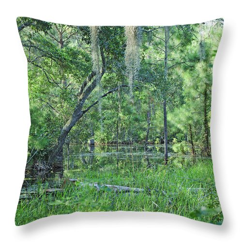 Swamp Throw Pillow featuring the photograph Back In Time In Florida by Kenneth Albin