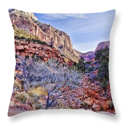 Zion Throw Pillow featuring the digital art Back Of Zion by Ches Black