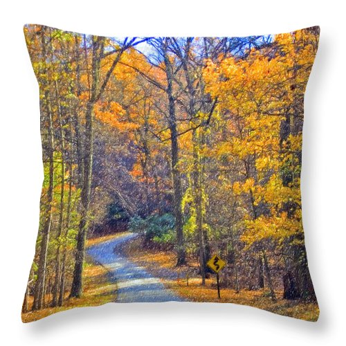 Back Road Fall Colors Foliage Revolutionary Civil War Road Valley Forge Pa Throw Pillow featuring the photograph Back Road Fall Foliage by David Zanzinger