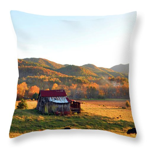 Tennessee Throw Pillow featuring the photograph Backroad by Brittany Horton