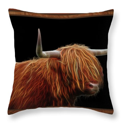 Highland Cow Throw Pillow featuring the photograph Bad Hair Day - Highland Cow - On Black by Gill Billington