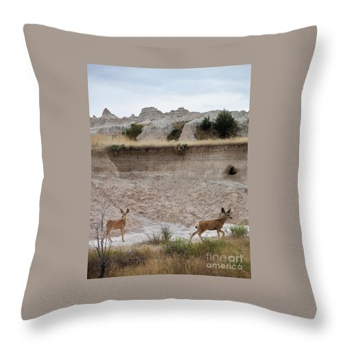 Badlands Throw Pillow featuring the photograph Badlands Deer Sd by Tommy Anderson