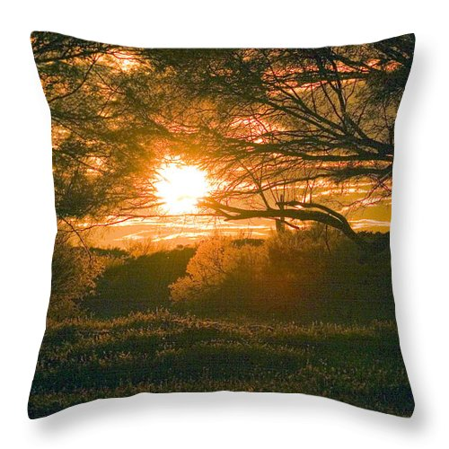 Baja California Throw Pillow featuring the photograph Baja Sunset by David Salter