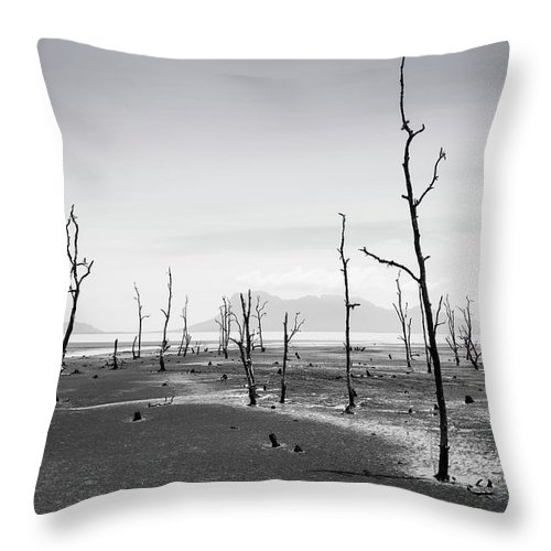Black And White Throw Pillow featuring the photograph Bako National Park 2 by Louise Welcome