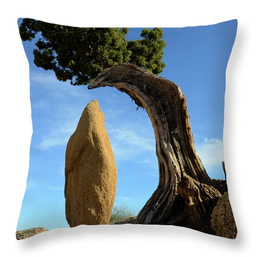 Joshua Tree National Park Throw Pillow featuring the photograph Balancing Act by Bob Christopher