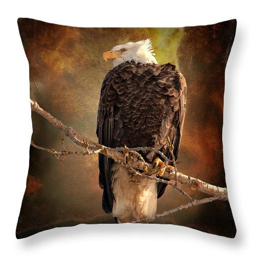 Art Throw Pillow featuring the photograph Bald Eagle by Al Mueller