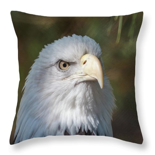 Bald Eagle Throw Pillow featuring the photograph Bald Eagle by Andrew Lelea