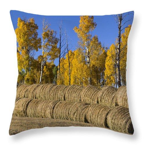 Colorado Photographs Throw Pillow featuring the photograph Rolls by Gary Benson