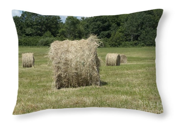 Hay Throw Pillow featuring the photograph Bales Of Hay In New England Field by Erin Paul Donovan
