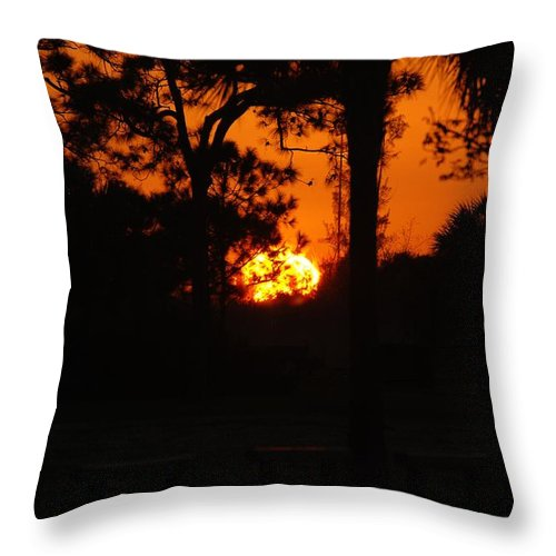 Nature Throw Pillow featuring the photograph Ball Of Sun by Rob Hans