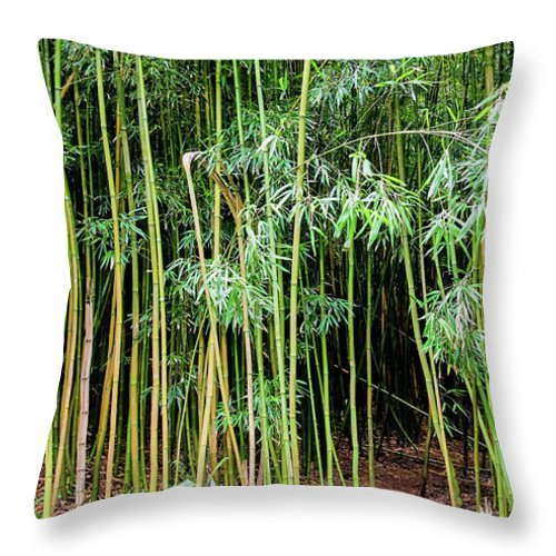 Bamboo Chimes Throw Pillow featuring the photograph Bamboo Chimes, Waimoku Falls Trail, Hana Maui Hawaii by Michael Bessler