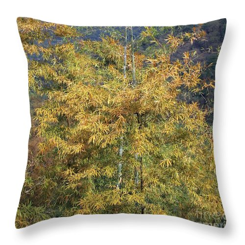 Autumn Throw Pillow featuring the photograph Bamboo Forest In The Fall by Yali Shi