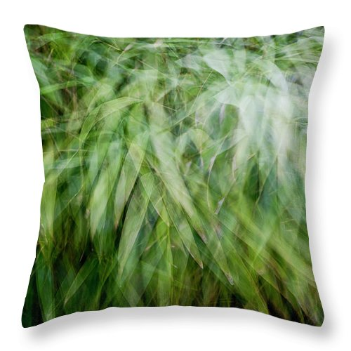 Abstract Throw Pillow featuring the photograph Bamboo In The Wind by Gary Eason
