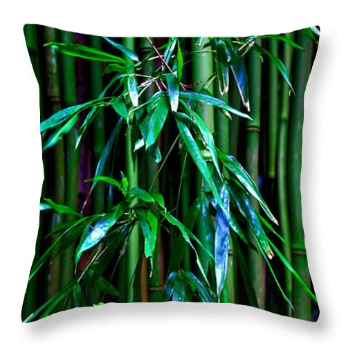 Bamboo Tropical Maui Hawaii Hana Jungle Tropics Throw Pillow featuring the photograph Bamboo by James Roemmling