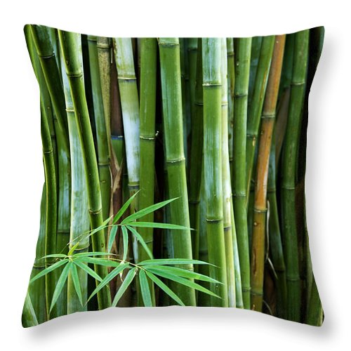 Asia Throw Pillow featuring the photograph Bamboo by Les Cunliffe