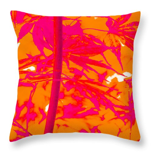 Trees Throw Pillow featuring the photograph Bamboo Like Leaves Orange by Gary Bartoloni
