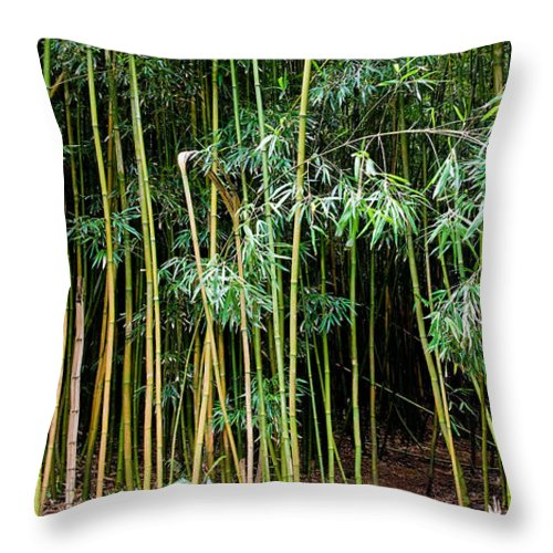 Bamboo Wind Chimes Throw Pillow featuring the photograph Bamboo Wind Chimes Waimoku Falls Trail Hana Maui Hawaii by Michael Bessler