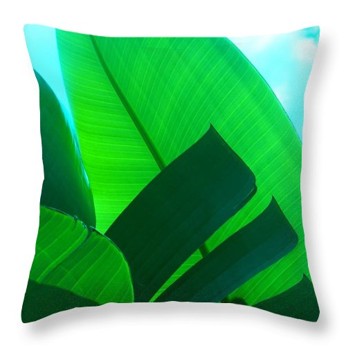 Botanical Throw Pillow featuring the photograph Banana Aqua by Florene Welebny