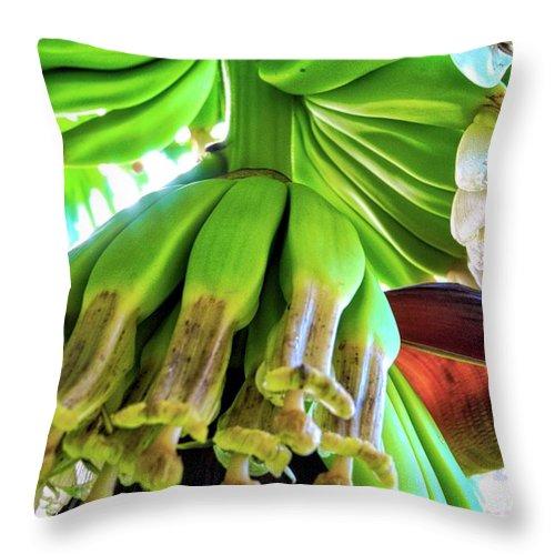 Bananas Throw Pillow featuring the photograph Banana Bells by Kirsten Giving
