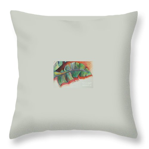 Trees Throw Pillow featuring the drawing Banana Leaves by Jamey Balester