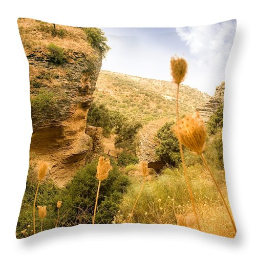 Spain Throw Pillow featuring the photograph Bandit Country Near The Edge Of The Fan In Ronda Area Andalucia Spain by Mal Bray